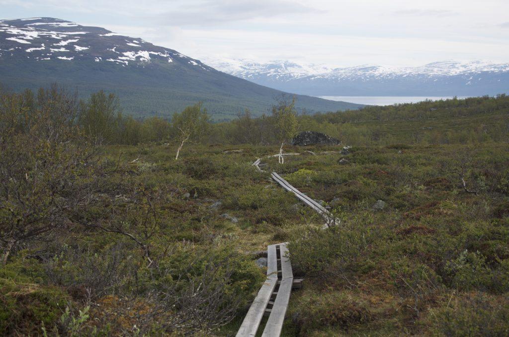다시 Kungsleden으로 내려가는 길