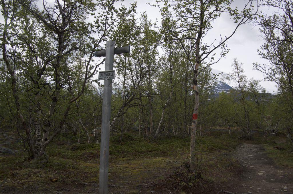 문제(?)의 갈림길, 오른쪽에 붉은색 표시가 보인다. 저리로 다시 출발!