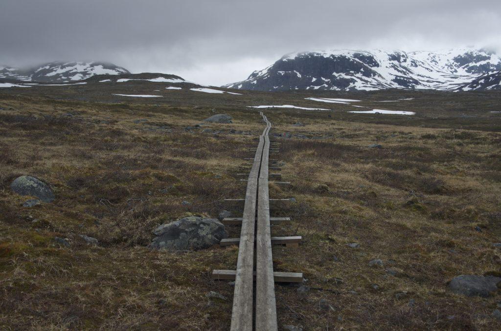 나무길은 Kungsleden의 상징이기도 하다. 매년 수만의 트래커가 이곳을 걸을 텐데 인간이 반복적으로 접촉하는 구간을 최소화하여 자연을 보호하려는 정책인 것 같다.