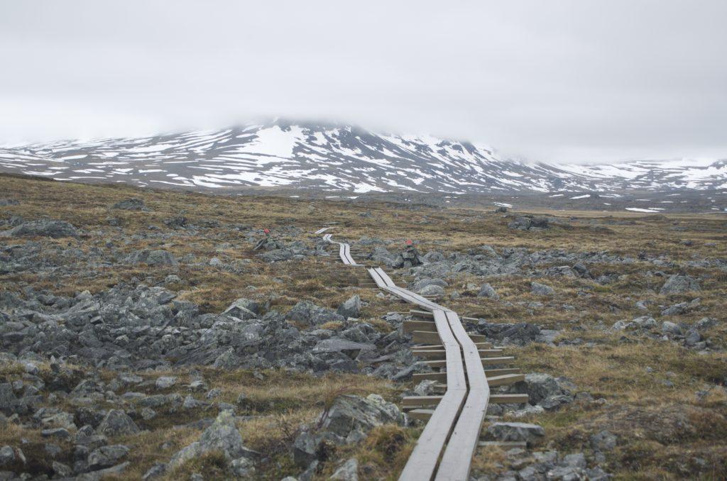 Alesjaure에서 Tjäktja로 가는 길 중... 돌길이 종종 나타난다.