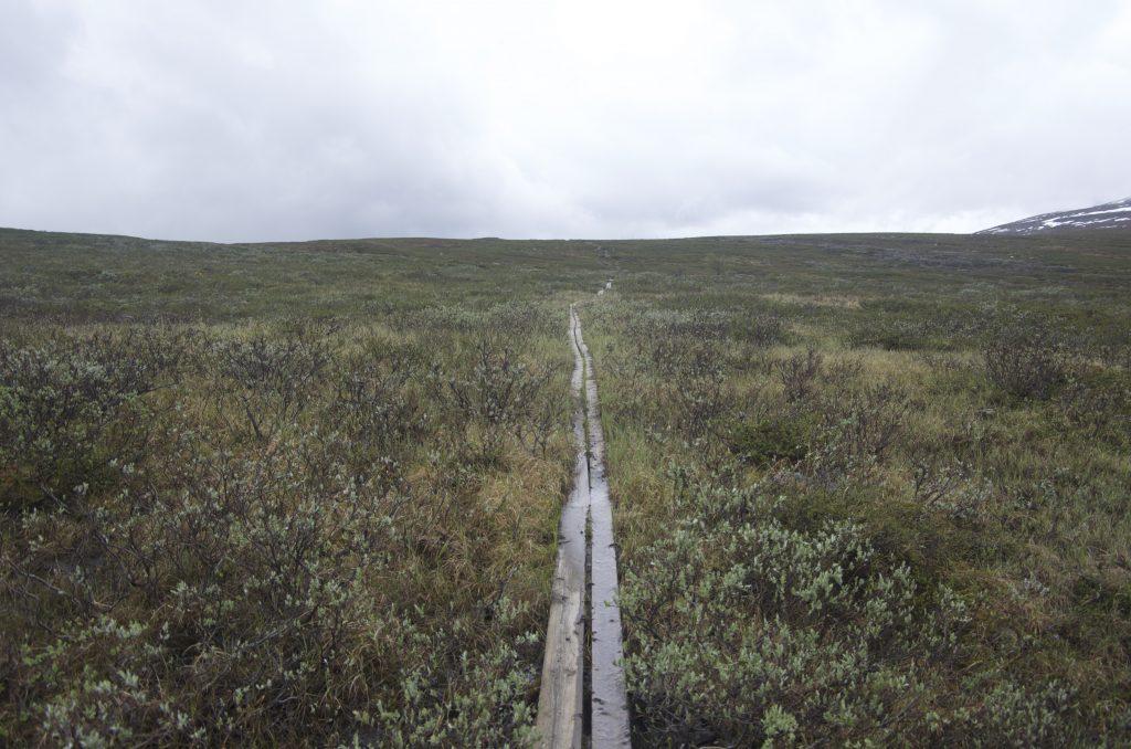 Kaitumjaure에서 Teusajaure로 가는 길