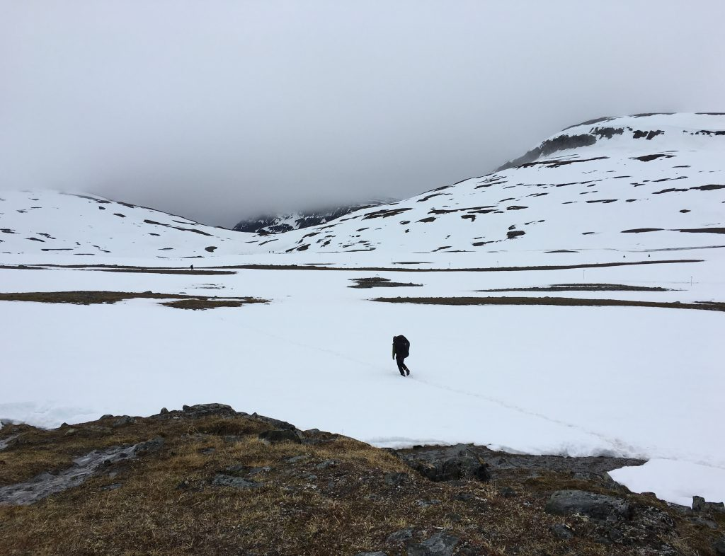 Kungsleden to Sälka (2016-06-19) - Winter in Summer