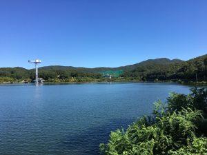 분당 율동공원 호수