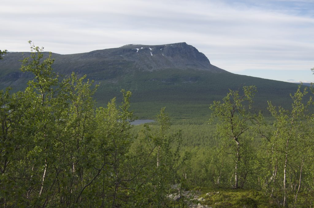 Kungsleden from Aktse to Parte 2016-06-25