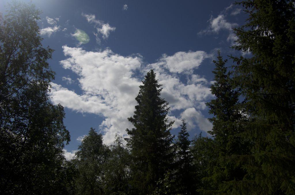 Kvikkjokk 하늘
