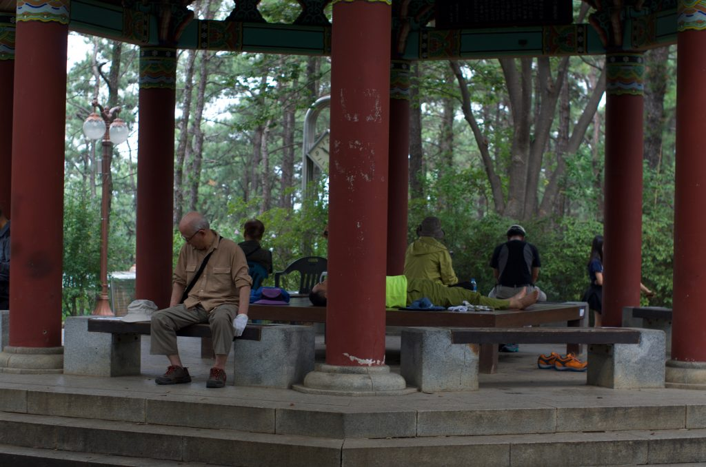 분당 중앙공원 정자