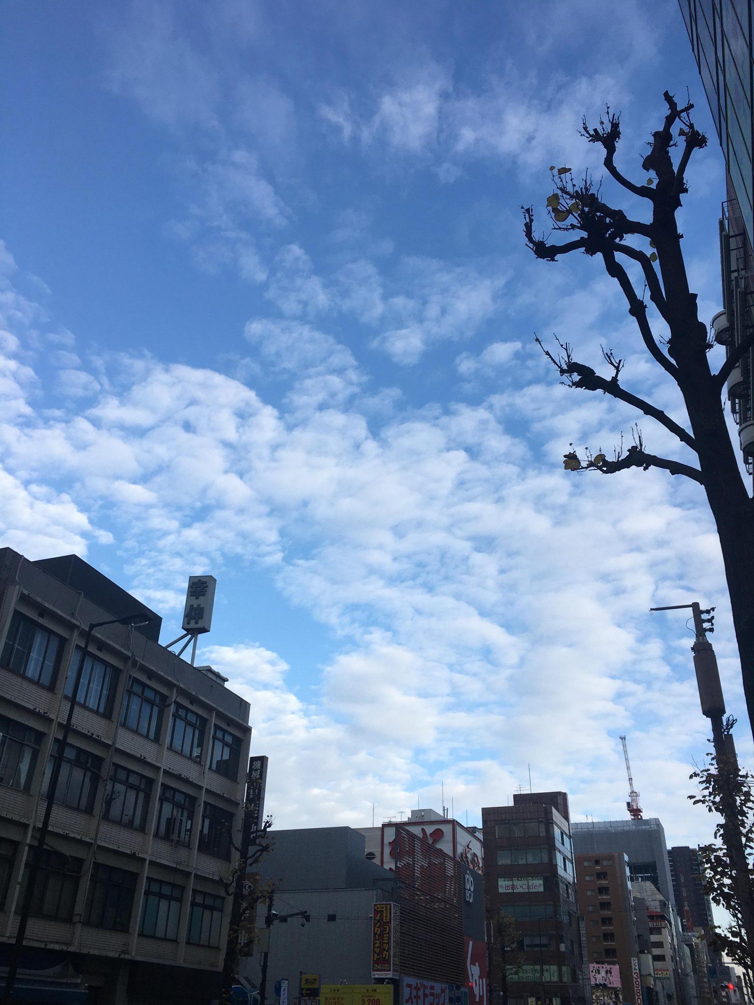 오사카 푸른 하늘