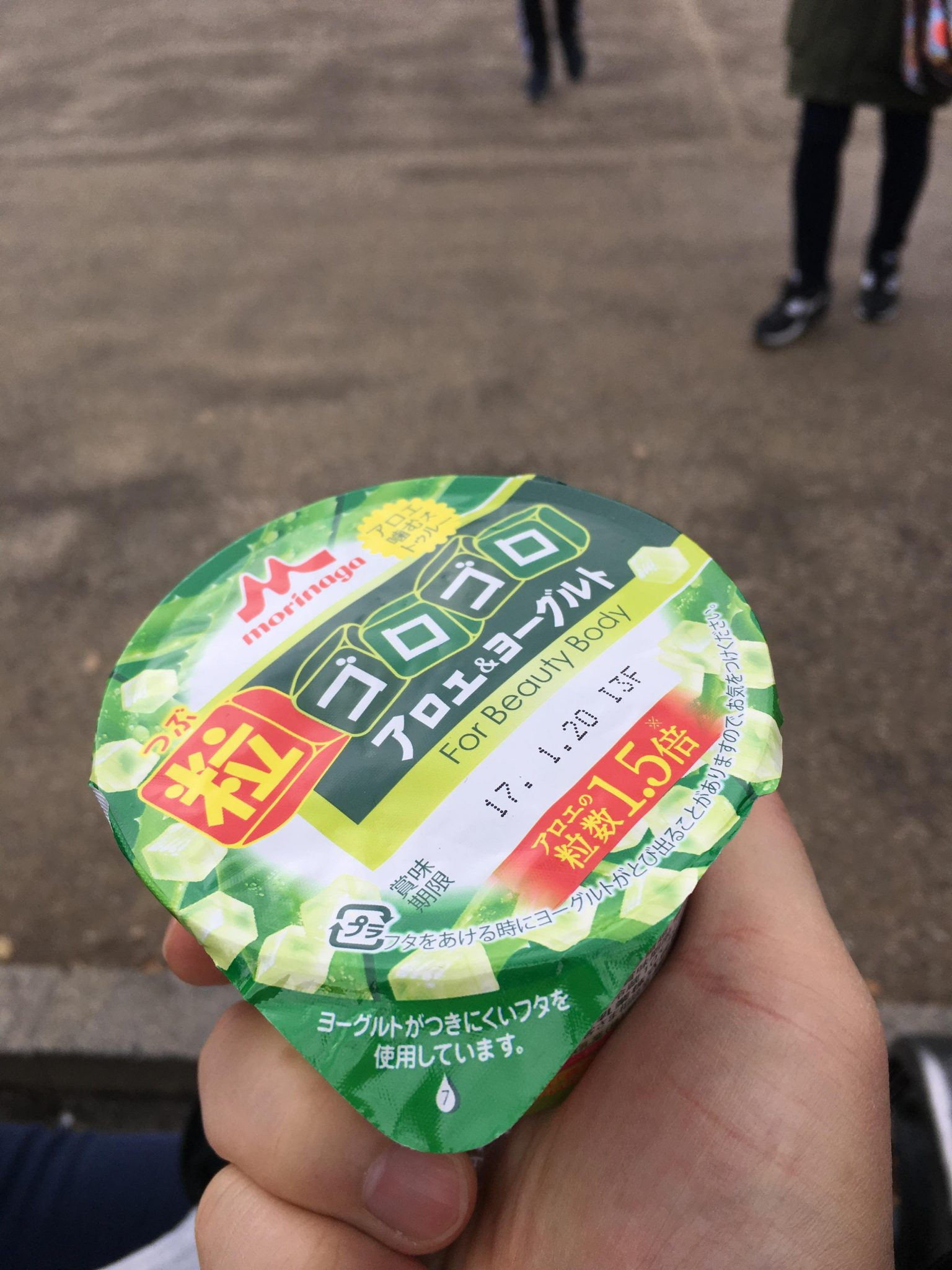 일본 요거트