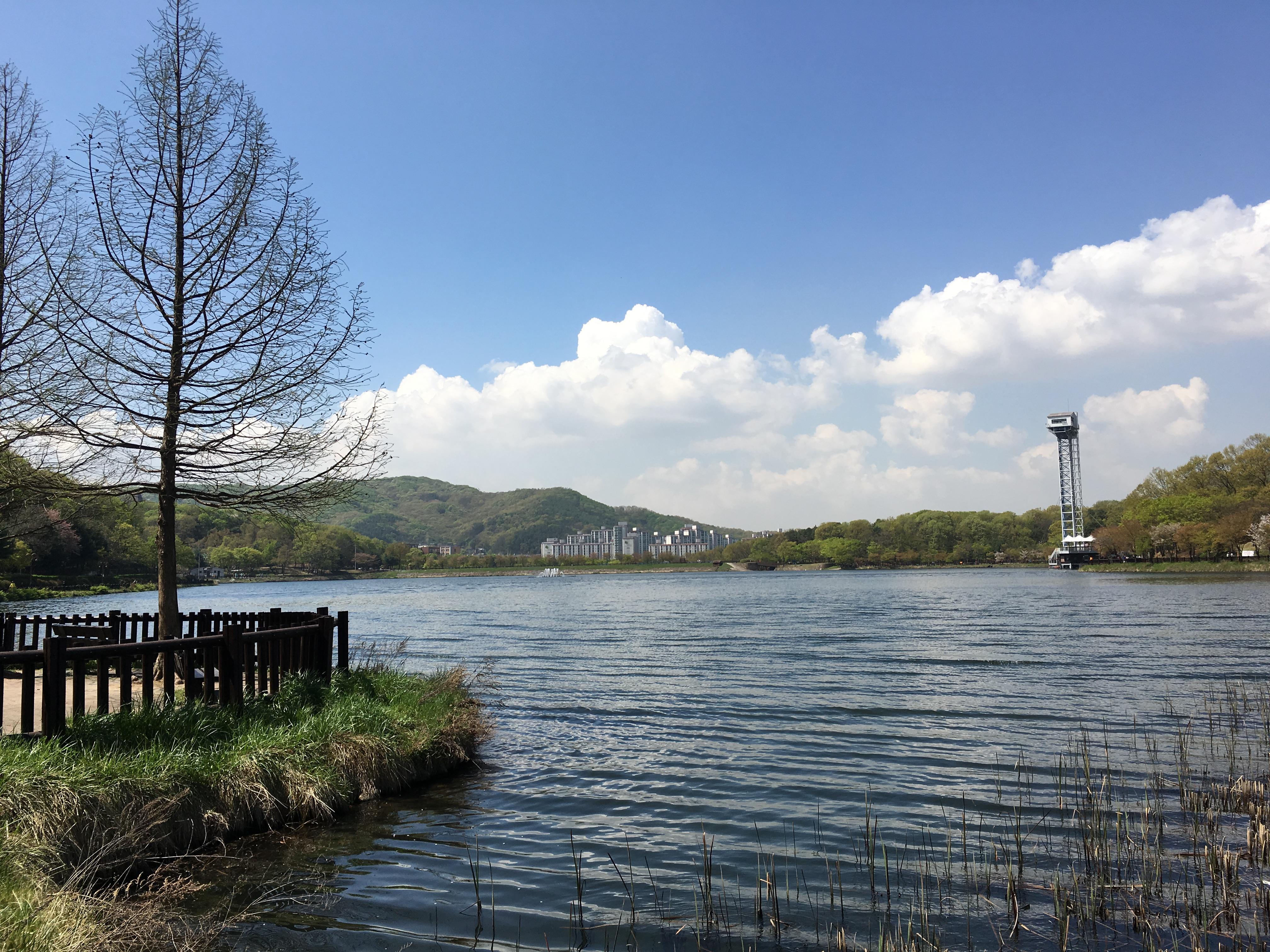 분당 율동공원 호수 분수 번지점프