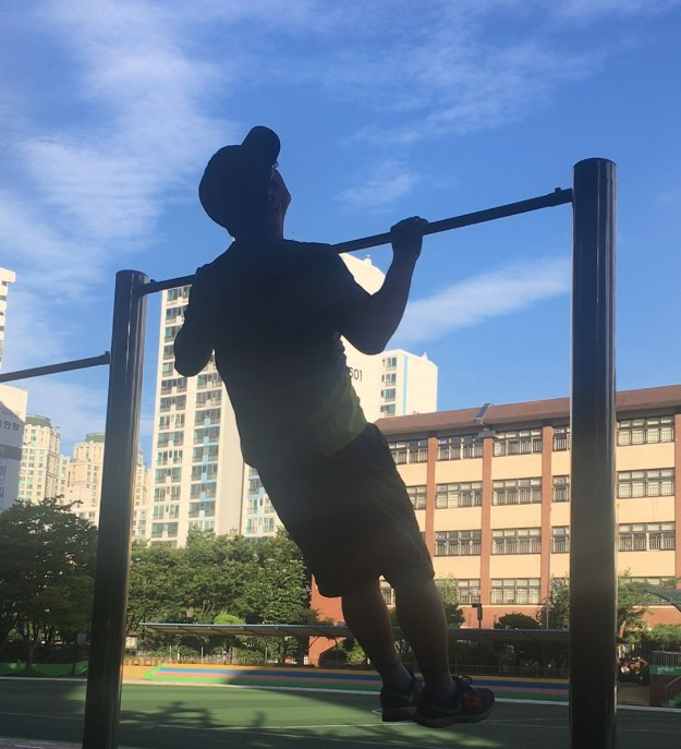 pullup_20170826