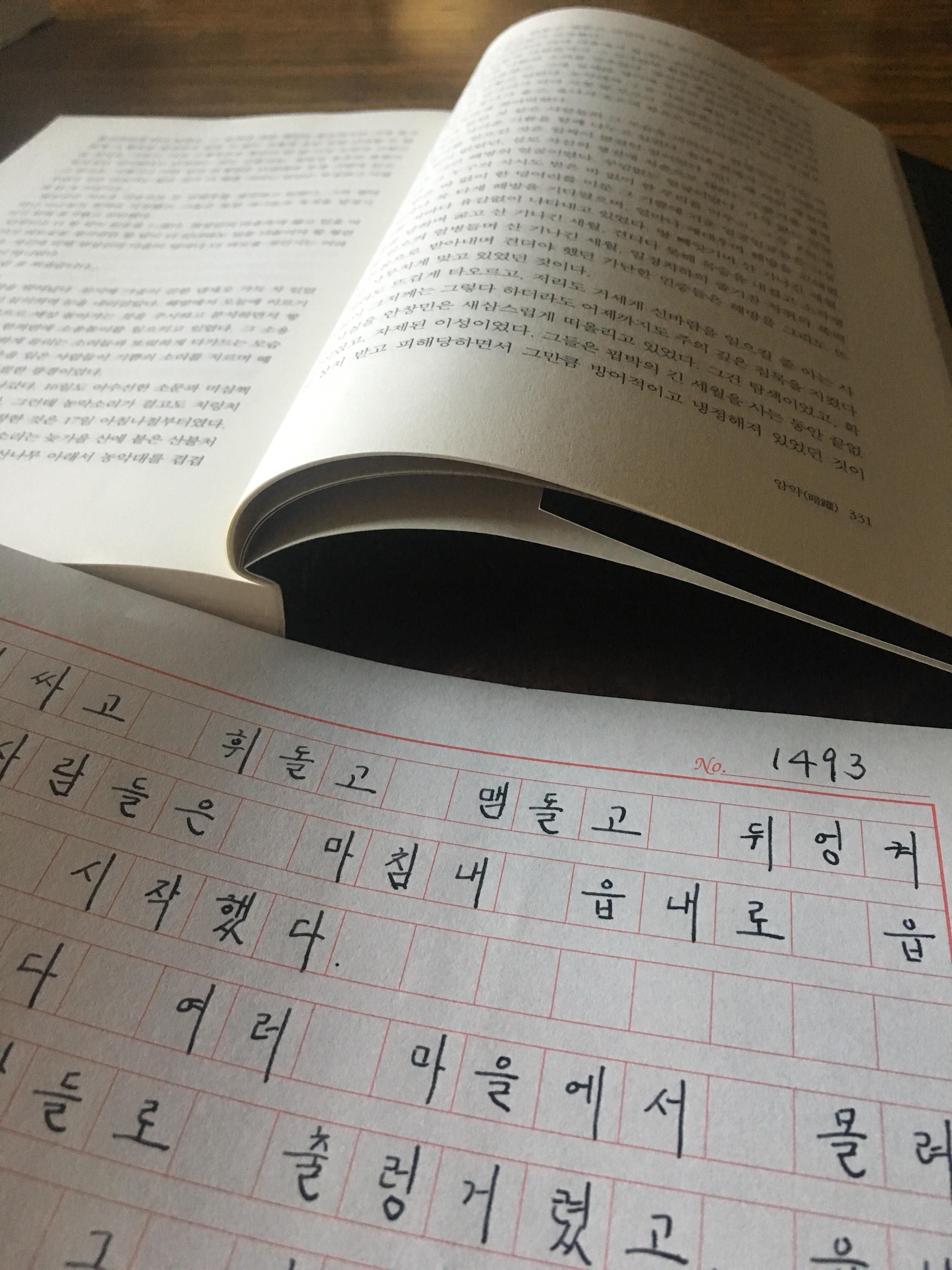 소설 태백산맥 필사