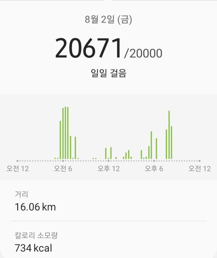 매일 2만보 - 20190802
