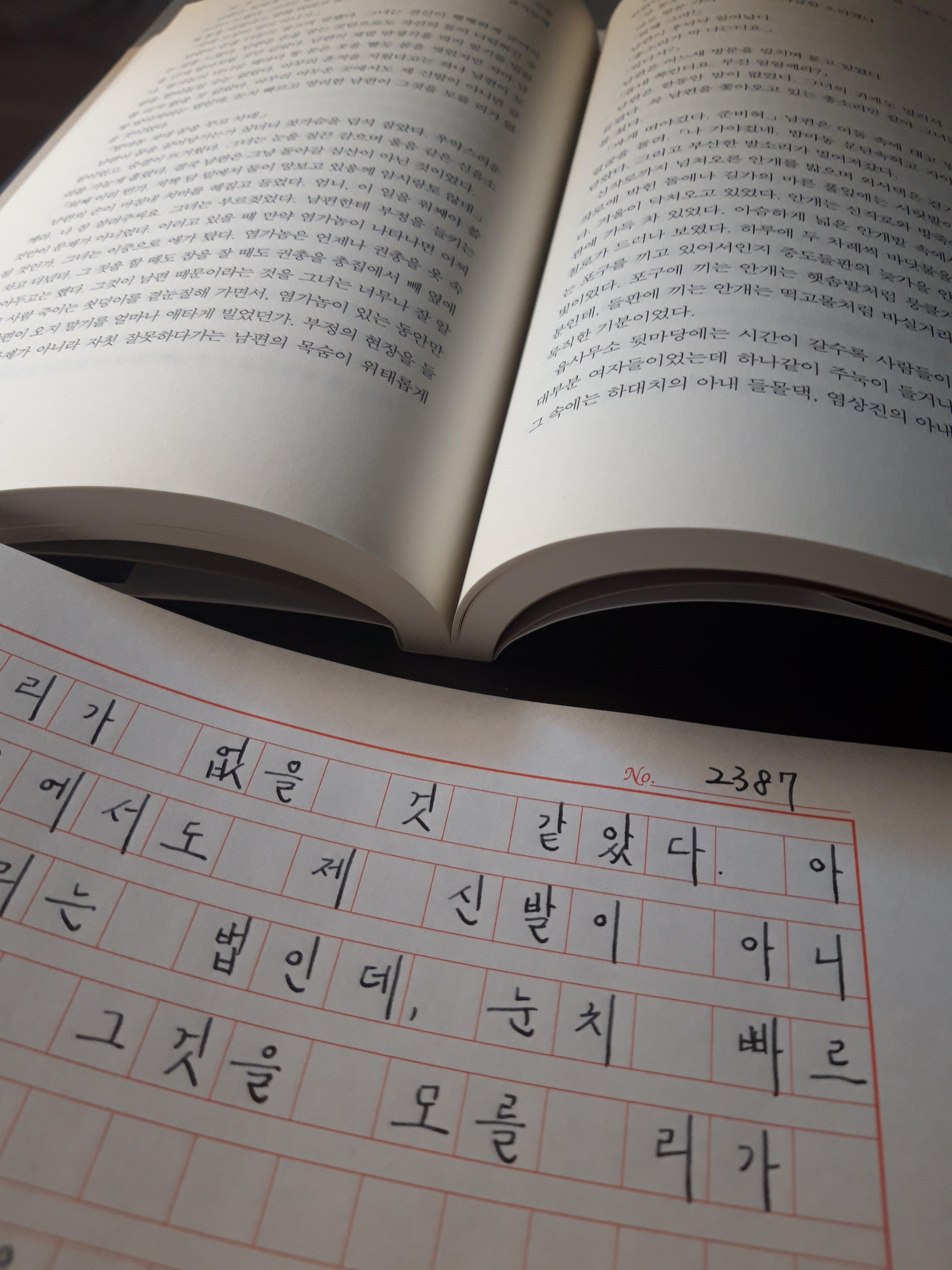 태백산맥 원고지 만년필 필사 40권