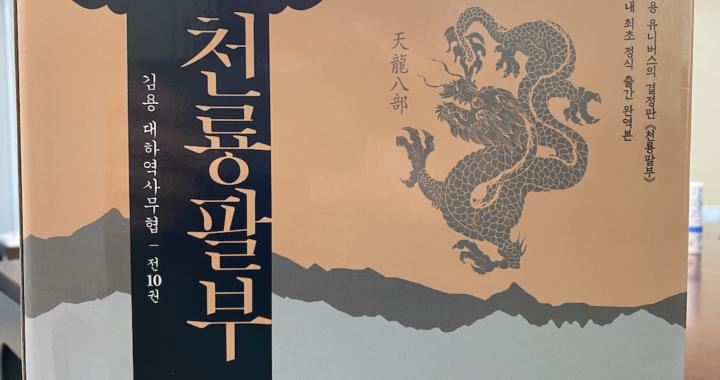 소설 천룡팔부 (김영사)